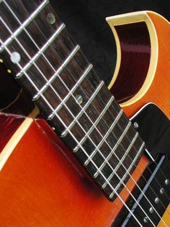 1966 Gibson ES-125 TC cutaway detail