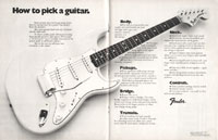 Fender Stratocaster - How To Pick a Guitar