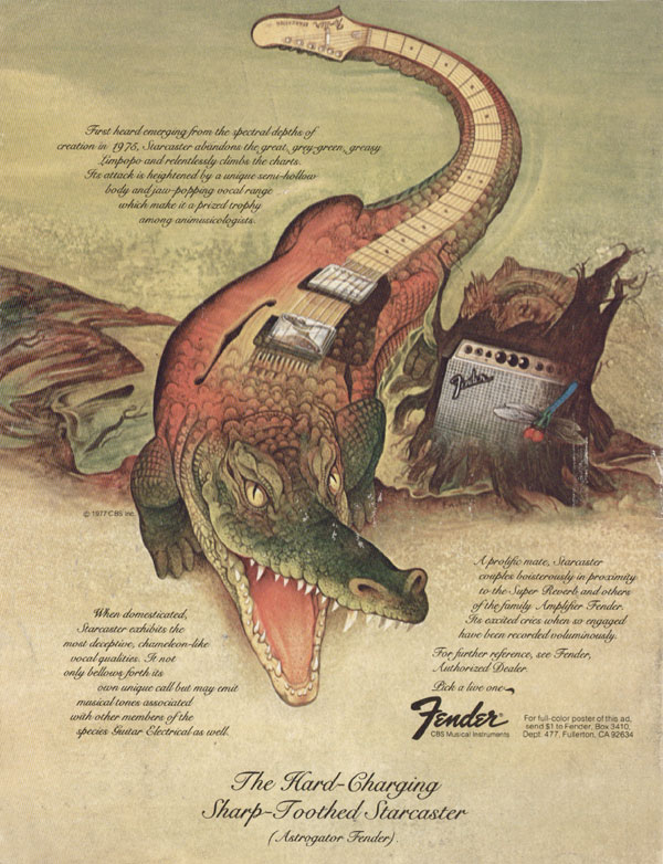 Fender advertisement (1977) The Hard-Charging Sharp-Toothed Starcaster