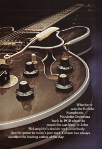 1975 Gibson thinline catalogue page 5